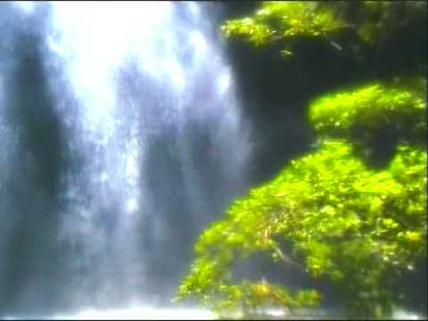 Stress Management & Relaxation – Dream – Waterfalls – Rainforest Music Endless Emotion
